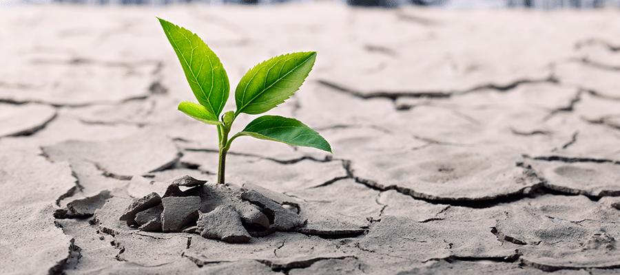 Climat-entreprises-responsables