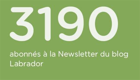 indice-abonnes-Newsletter-Blog-Labrador